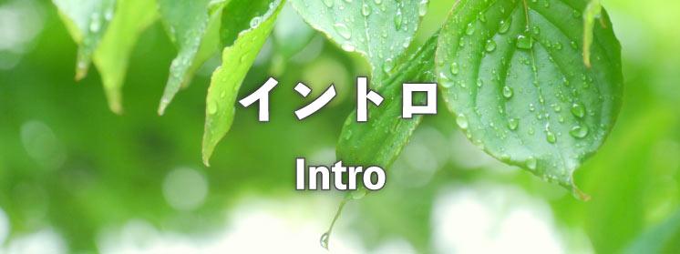 イントロ:Intro
